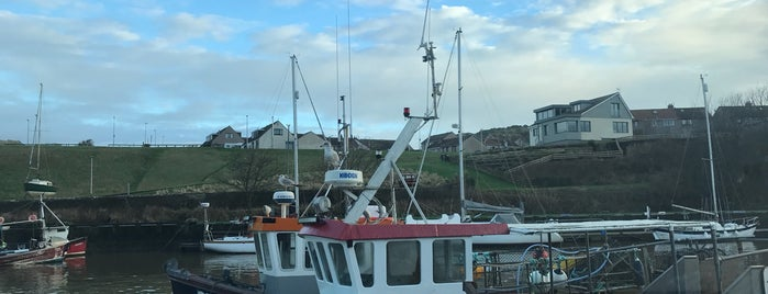 Eyemouth Harbour is one of Lugares favoritos de Carl.