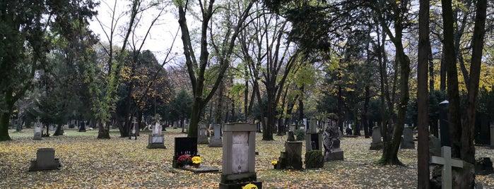 Ondrejský cintorín is one of Lugares favoritos de Martin.