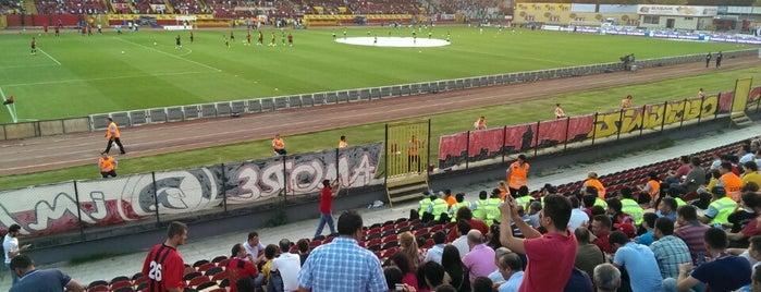 Eskişehir Atatürk Stadyumu is one of Türkiye Süper Lig Stadyumu (Season 2013-2014).