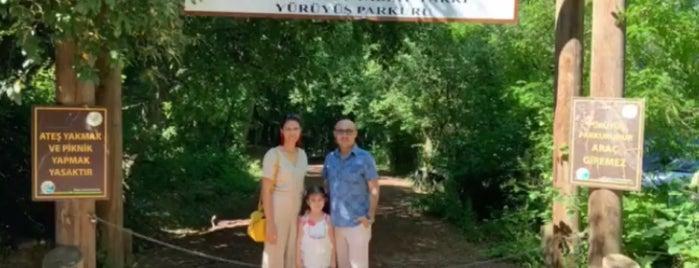 Polonezköy Tabiat Parkı is one of Duygu : понравившиеся места.