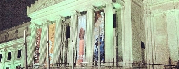 Brooklyn Museum is one of Florida, USA by New Vista Properties.