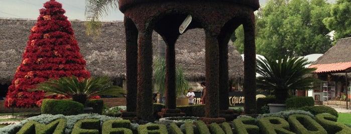 Megaviveros is one of Orte, die Camila gefallen.