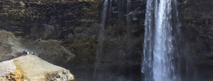 Seljalandsfoss is one of Locais curtidos por Jana.
