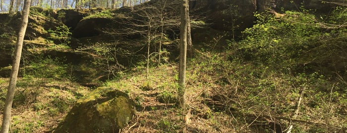 Hoosier National Forest is one of National Recreation Areas.