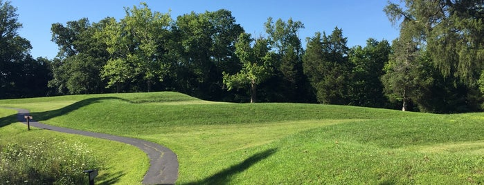 Serpent Mound is one of Native American Cultures, Lands, & History.