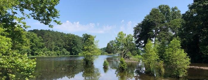 Lake Nevin is one of Lugares favoritos de Garrett.
