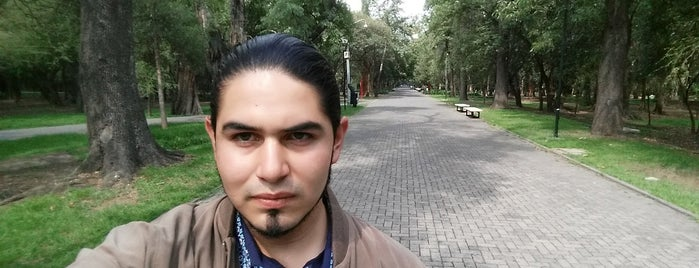 Bosque de Chapultepec is one of Posti che sono piaciuti a Arthur.