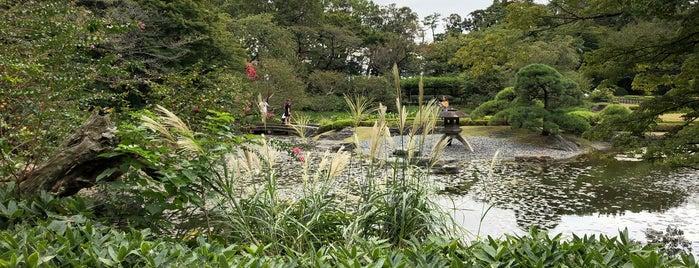 二の丸庭園 is one of 西郷どんゆかりのスポット.