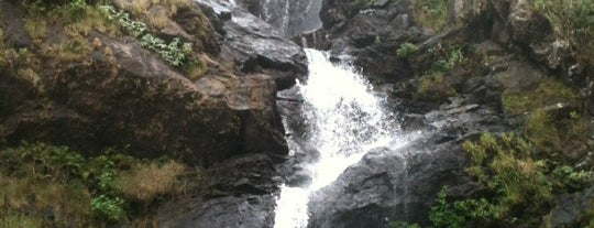 Iruppu Falls is one of Incredible India.