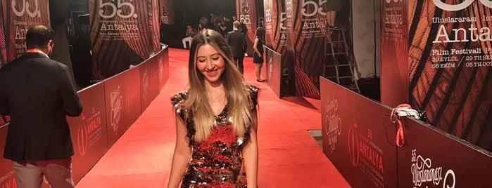 Antalya 55. Uluslararası Altın Portakal Film Festivali is one of Şebnem'in Beğendiği Mekanlar.
