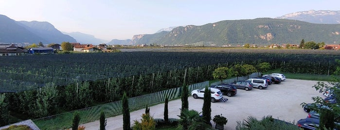 Trentino-Alto Adige is one of สถานที่ที่ Sandybelle ถูกใจ.