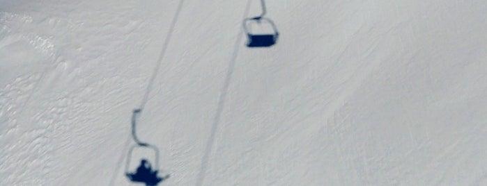 DSB Wildspitz is one of Stubaier Gletscher / Stubai Glacier.