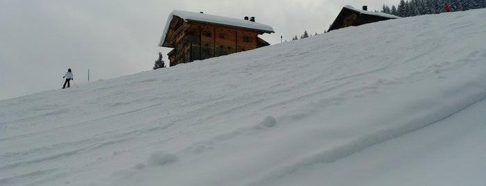 Schatzberg is one of Ski Juwel Alpbachtal Wildschönau.