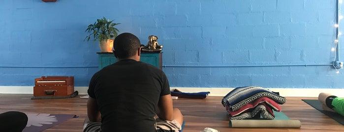 Wild Lotus Yoga is one of Lugares favoritos de Shanna.