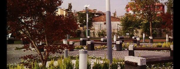 Çevre Eğitim Parkı is one of Lieux qui ont plu à Merve.