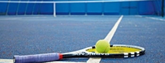 Ash Manor Tennis is one of PınarG'ın Beğendiği Mekanlar.