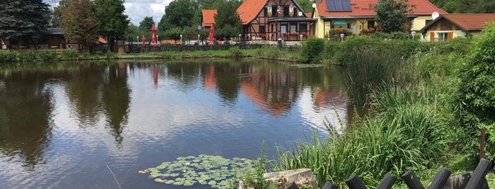 Restaurant Bückemühle is one of RESTAURANTS.
