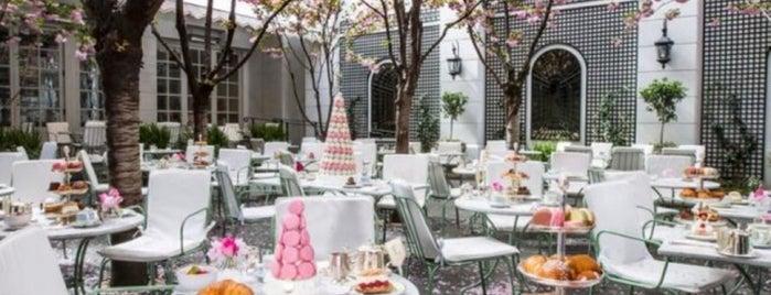 Laduree Garden Soho is one of NYC 4.