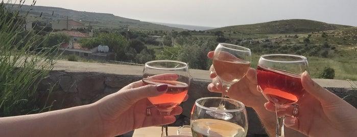 Corvus Şarapları Tadım & Satış Ofisi is one of Celal'ın Beğendiği Mekanlar.