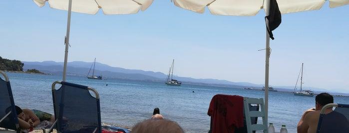 Enzo beach bar Eretria is one of Anya 님이 저장한 장소.