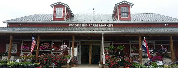 Woodbine Farm Market is one of sole.