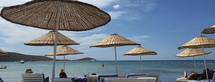 Zio Beach is one of ÇEŞME-ALAÇATI GUIDE.