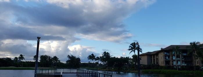 Timbers Kauai Ocean Club & Residences is one of Hawaii Faves.