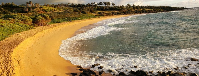 Donkey Beach is one of Orte, die Erik gefallen.