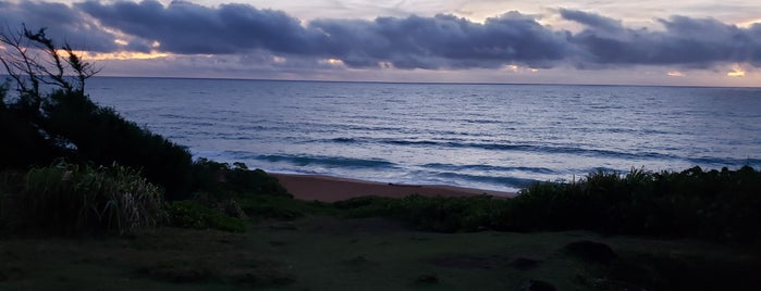 Donkey Beach is one of Posti che sono piaciuti a Erik.