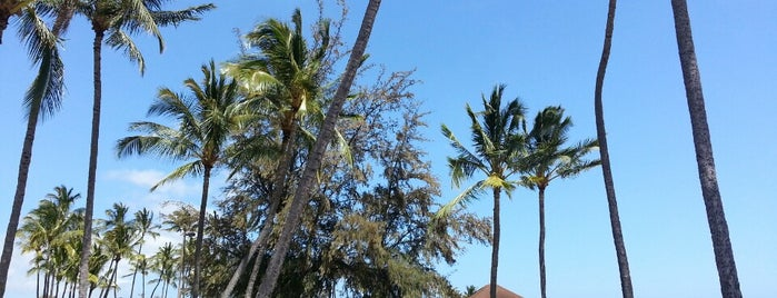 Salt Pond Beach Park is one of Places to Visit: Kauai, HI.
