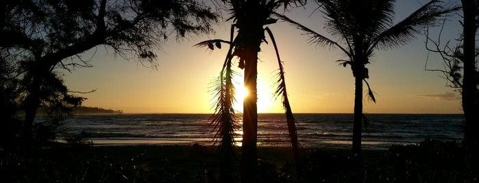 Wailua Beach is one of Kauai, Hawaii.