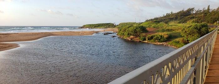 Kapaa Stream near Kealia Beach is one of My Fave places.