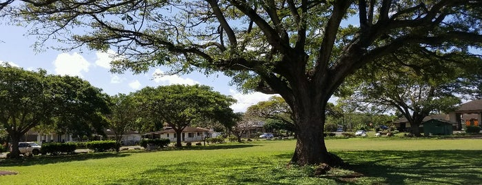 Hanapepe Park (Sunshine Markets) is one of Kauai.