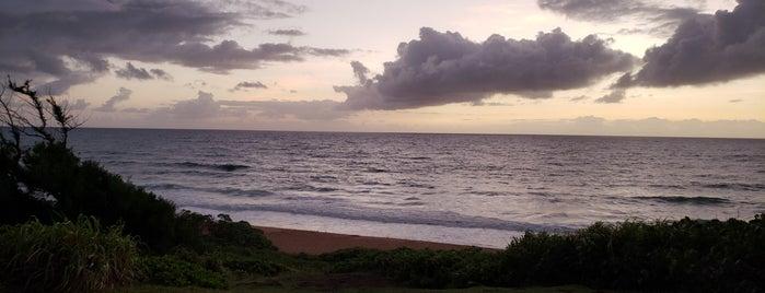 Donkey Beach is one of Locais curtidos por Erik.