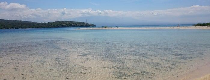 Menjangan Island is one of Enjoy Bali Ubud.