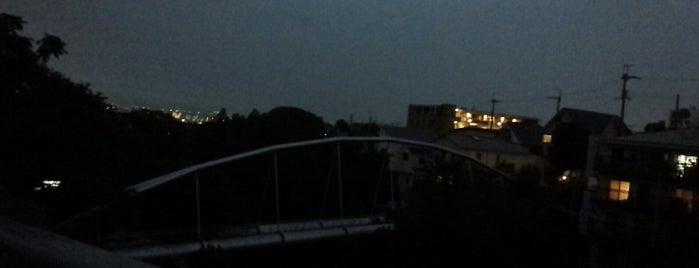 夙川水管橋 is one of 夙川にかかる橋.
