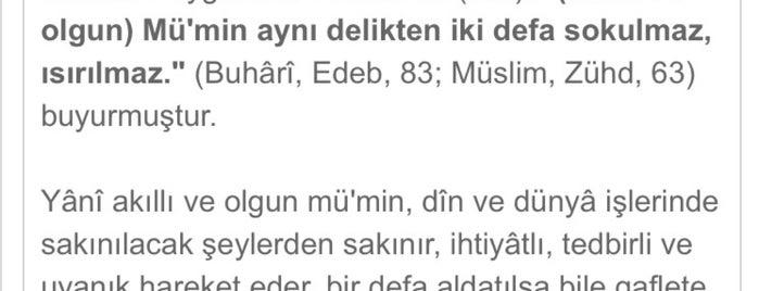 Tenzile Erdoğan Kız Anadolu İmam Hatip Lisesi is one of Pelin 님이 좋아한 장소.