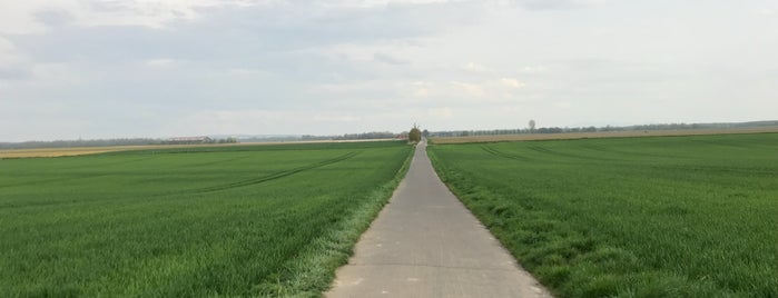 Zündorf is one of Andreas : понравившиеся места.