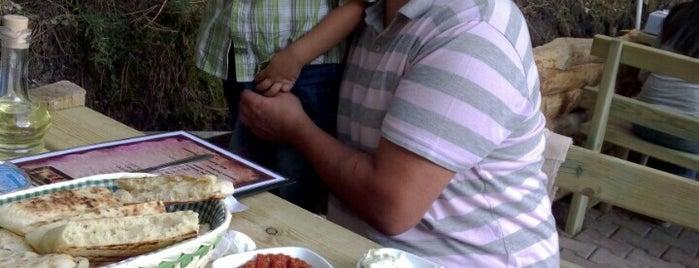Dayının yeri is one of Ankara da yemek.
