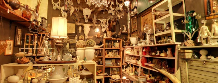 Uncommon Objects is one of Austin Adventures.