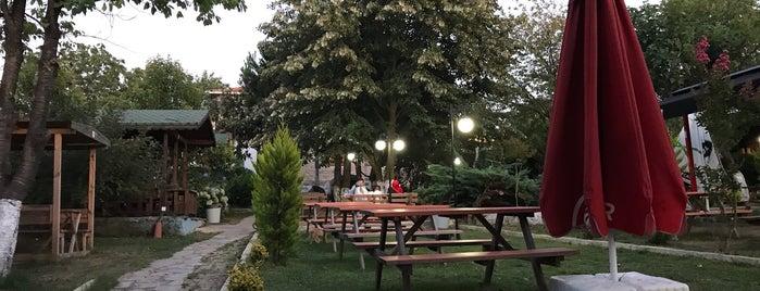 Kerte Gusto Restaurant is one of Kadıköy~Adalar~Anadolu Yakası.