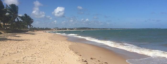 Praia de Itacimirim is one of Gabrielaさんのお気に入りスポット.