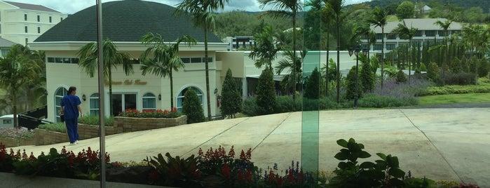 โรงพยาบาลสัตว์ทิพย์พิมาน is one of Posti che sono piaciuti a Sopha.