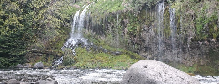 Mossbrae Falls is one of One Day (Everywhere) ♥.