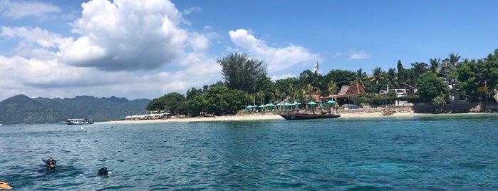 Manta Dive - Gili Air is one of Bali 2.0.