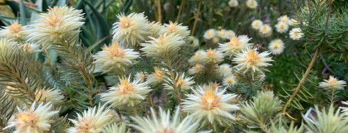 Stellenbosch Botanical Gardens is one of Ludi's Südafrika.