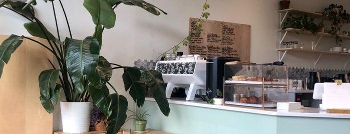 Botany Coffee is one of Jen 님이 좋아한 장소.