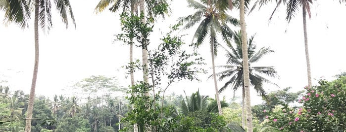 Kampung Cafe & Cottages is one of Bali.
