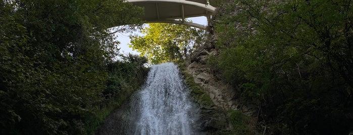 Waterfall in Botanical Garden is one of Orte, die Maria gefallen.