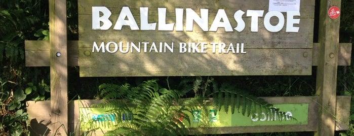 Ballinastoe Mountain Bike Trail is one of Dublin.